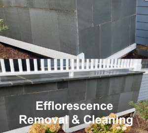 Efflorescence Removal and Cleaning